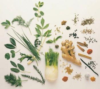 Bylinky a koreniny pre zdravie